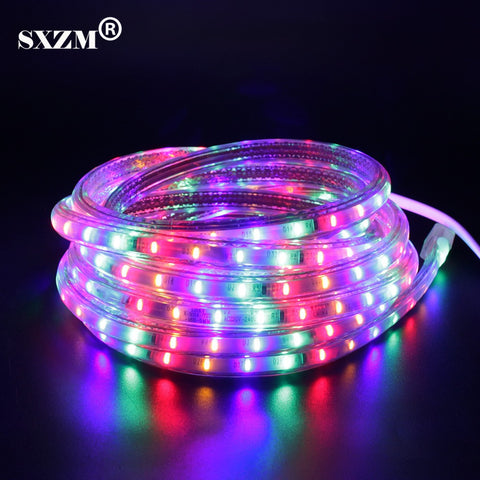 SXZM AC220V Colorful 3014 led strip 72leds/Meter IP67 waterproof outdoor garden light with