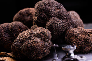 Fresh black winter truffles with truffle shaver