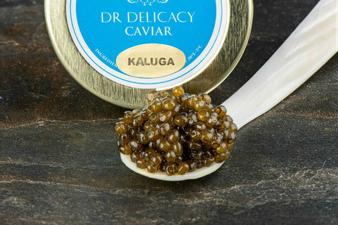 Kaluga caviar on a mother of pearl spoon and jar lid on the background