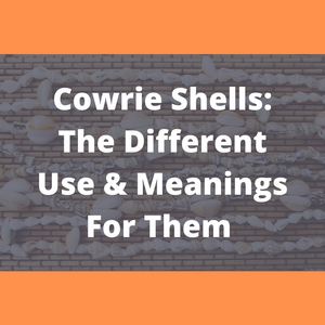 Cowrie Shells: The Different Use and Meanings For Them