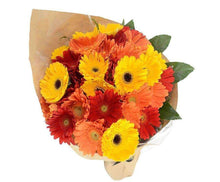 Brilliance Mixed Gerberas Bouquet-Flowers Across Melbourne
