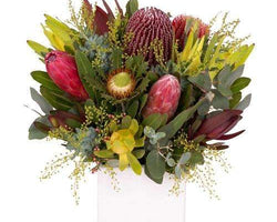 Double Wildflower Natives Posy Deluxe-Box-Flower Delivery Melbourne CBD