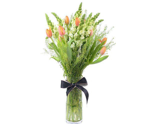 Melbourne Flower Delivery - Elegant Tulips with Snapdragon in Vase Arrangement - Melbourne Florist