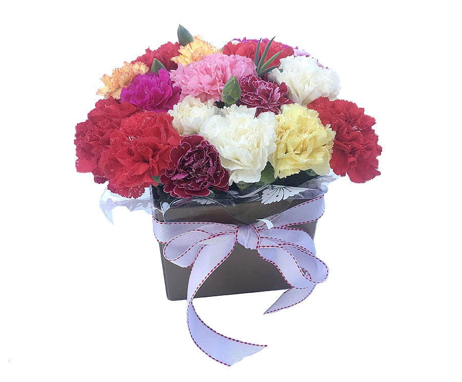 Mixed Carnation in Box