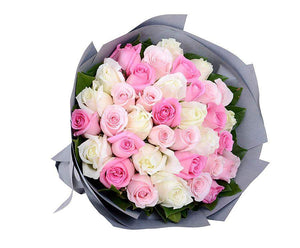 My Lady White Pink Roses Delivery Melbourne