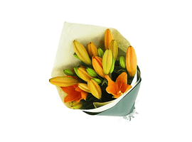 Pride LA Lily Hand Bouquet-Unique Flower Delivery Melbourne