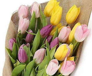 Bright Tulips Delights Bouquet - Flowers
