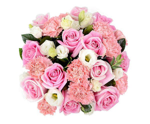 Light It Up Pink Roses - Delivery Melbourne