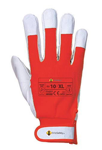 Tergsus Micro Gloves - Work Glove for Men - Can be used for Winter, Ski, Driving, Garden Working, Construction (Extra Large, Red, 12 Pairs)