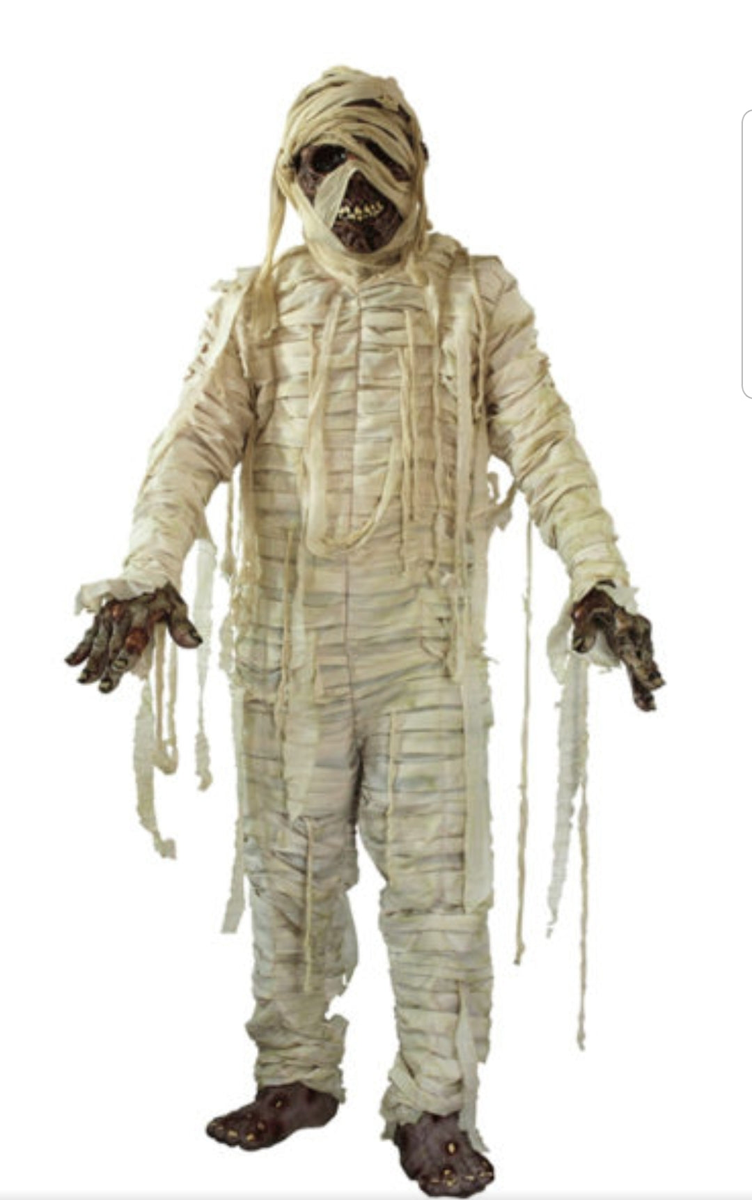 Mummified Costume