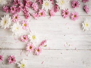 Creamy White & Pink Flowers Photography Wallpaper
