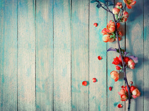 Spring Blossom Photography Wallpaper