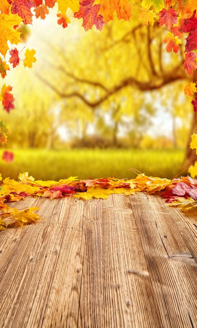 Autumn Trees Photography Background