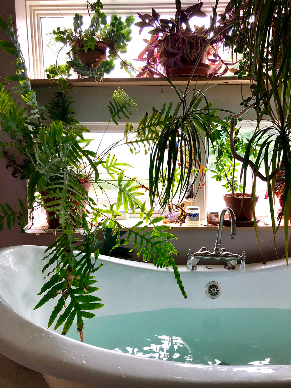 botanical bath