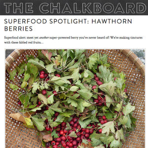 The Chalkboard - Superfood Spotlight: Hawthorn Berries