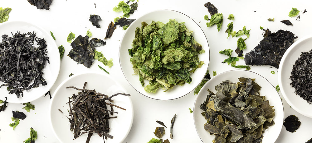 Seaweed in dishes--the salty flavor