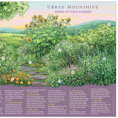Herbs of High Summer Poster by Urban Moonshine featuring 12 herbs in a beautiful illustration of a summer herb garden in the countryside of Vermont. RIGHT side art detail.