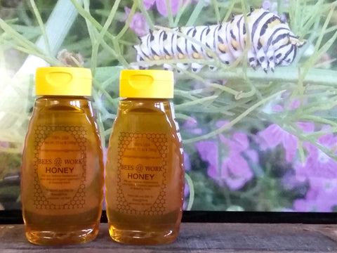 Bees @ Work Honey All Natural 100% USA Pure 12 oz. Squeeze Bottle with safety cap