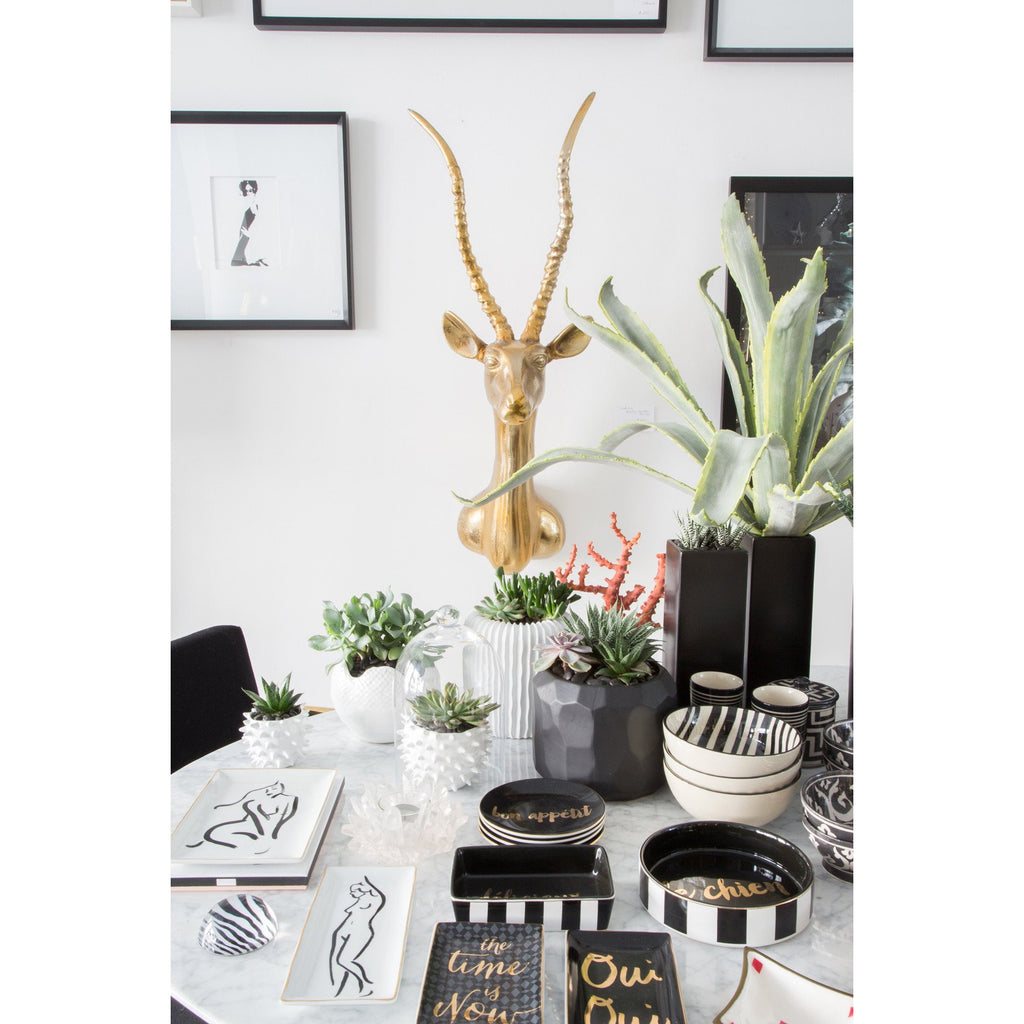 Cacti Pot - Accessories - Black Rooster Maison