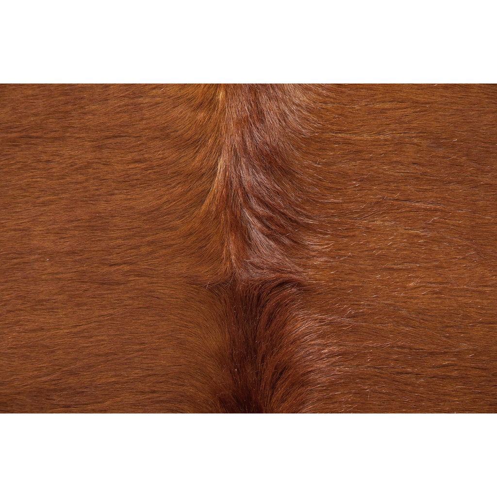 Caramel Hide - Rugs - Black Rooster Maison
