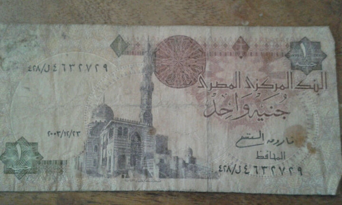 Egypt 1 Egyption Pound Banknote Serial Number in photo (0011) Circulated