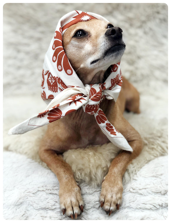 Small dog in a kerchief