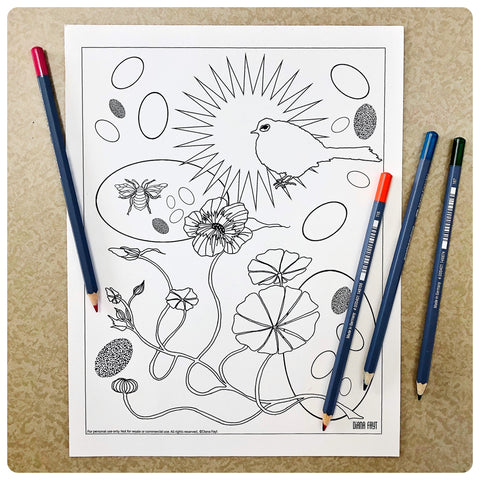 Springtime Wren Coloring Page