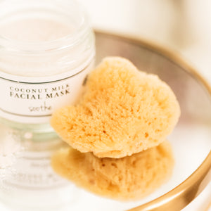 Facial Silk Sea Sponge