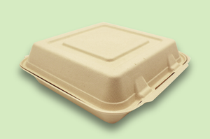 Sugarfiber™ 10x10 inch Square Hinged Container