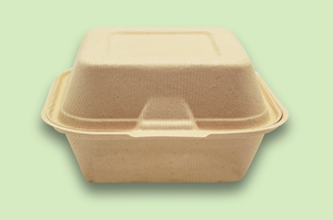 Sugarfiber™ 6x6 inch Square Hinged Container