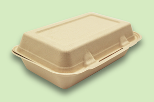 Sugarfiber™ 9x6 inch Rectangle Hinged Container