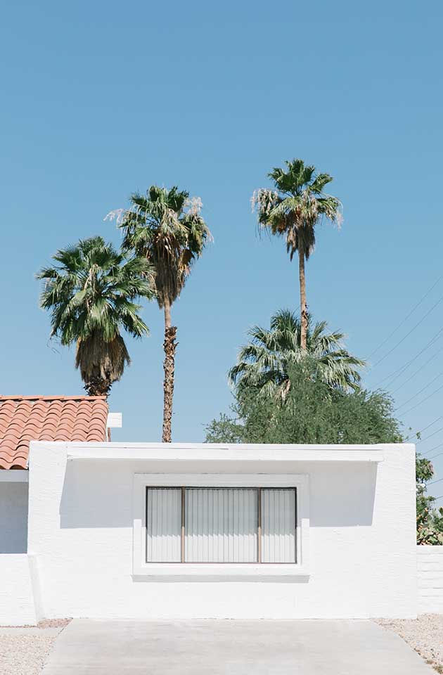 exterior view of building and palm trees