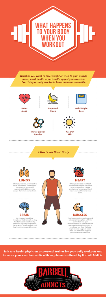 What Happens To Your Body When You Workout