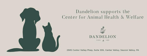 Dandelion in Saucon Valley the Center for Animal Health and Welfare Easton, PA