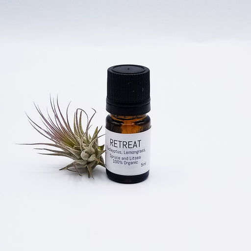 ESSENTIAL OIL BLEND - RETREAT - EUCALYPTUS, LEMONGRASS, SPRUCE, AND LITSEA