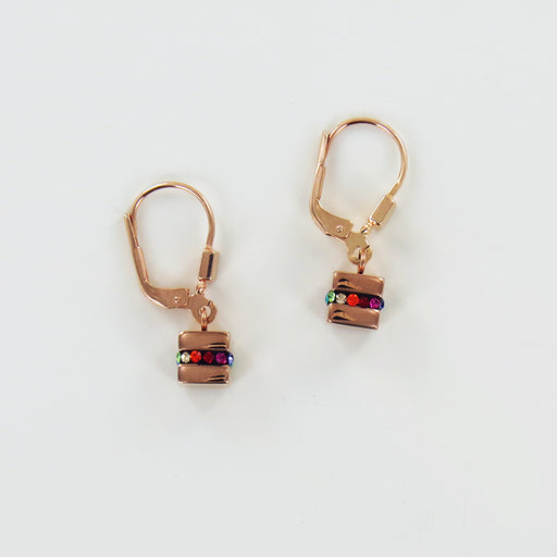 STAINLESS STEEL AND MULTICOLOR EARRING