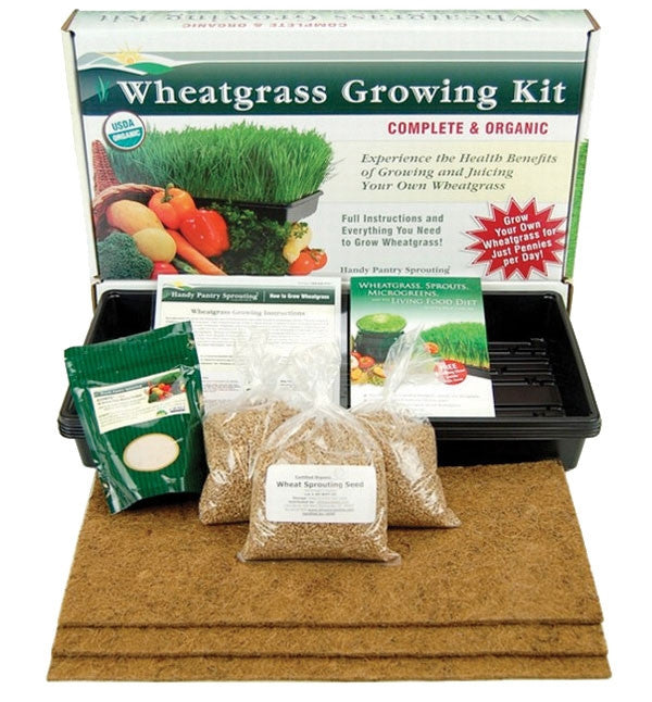 Handy Pantry Wheatgrass Growing Kit