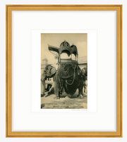 Vintage 1905 Elephant Carriage - Jaipur India Art Print - British Malaya Shop