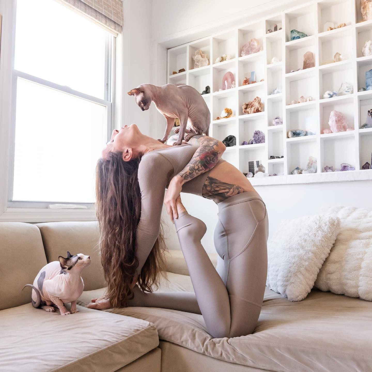 @eleonorazampatti wearing light purple leggings and matching sports bra while stretching with her two cats in her living room equipped with a crystal collection wall.