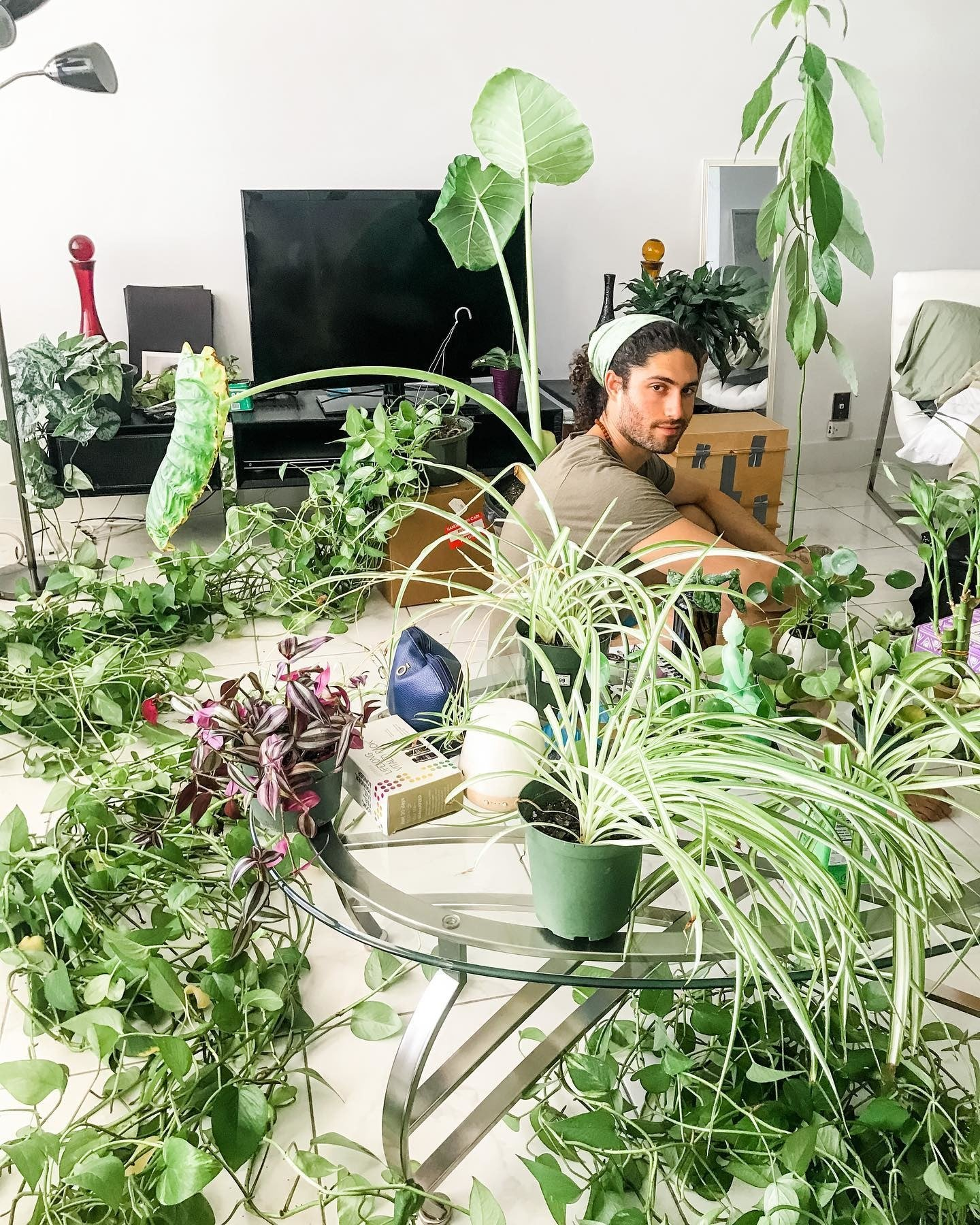 @healingmotions sitting within his T.V. room filled with beautiful plants of all shapes and sizes.