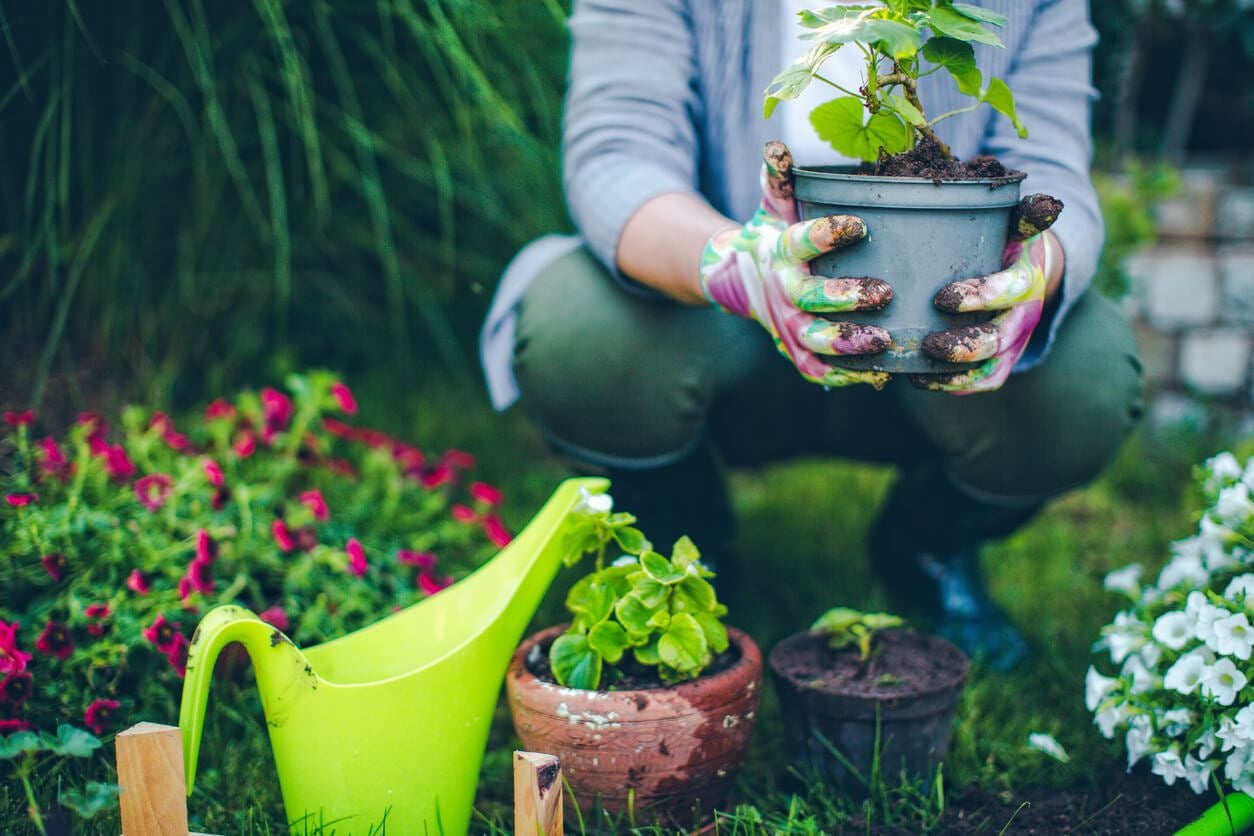 Getting Your Backyard Ready for Spring
