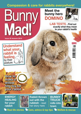 SALE -Bunny Mad Magazine: Issue 25
