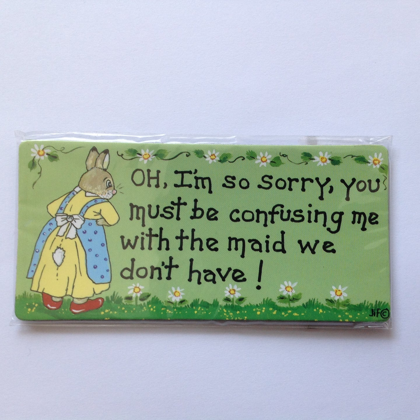 Fun Bunny Fridge Magnets - Assorted Designs