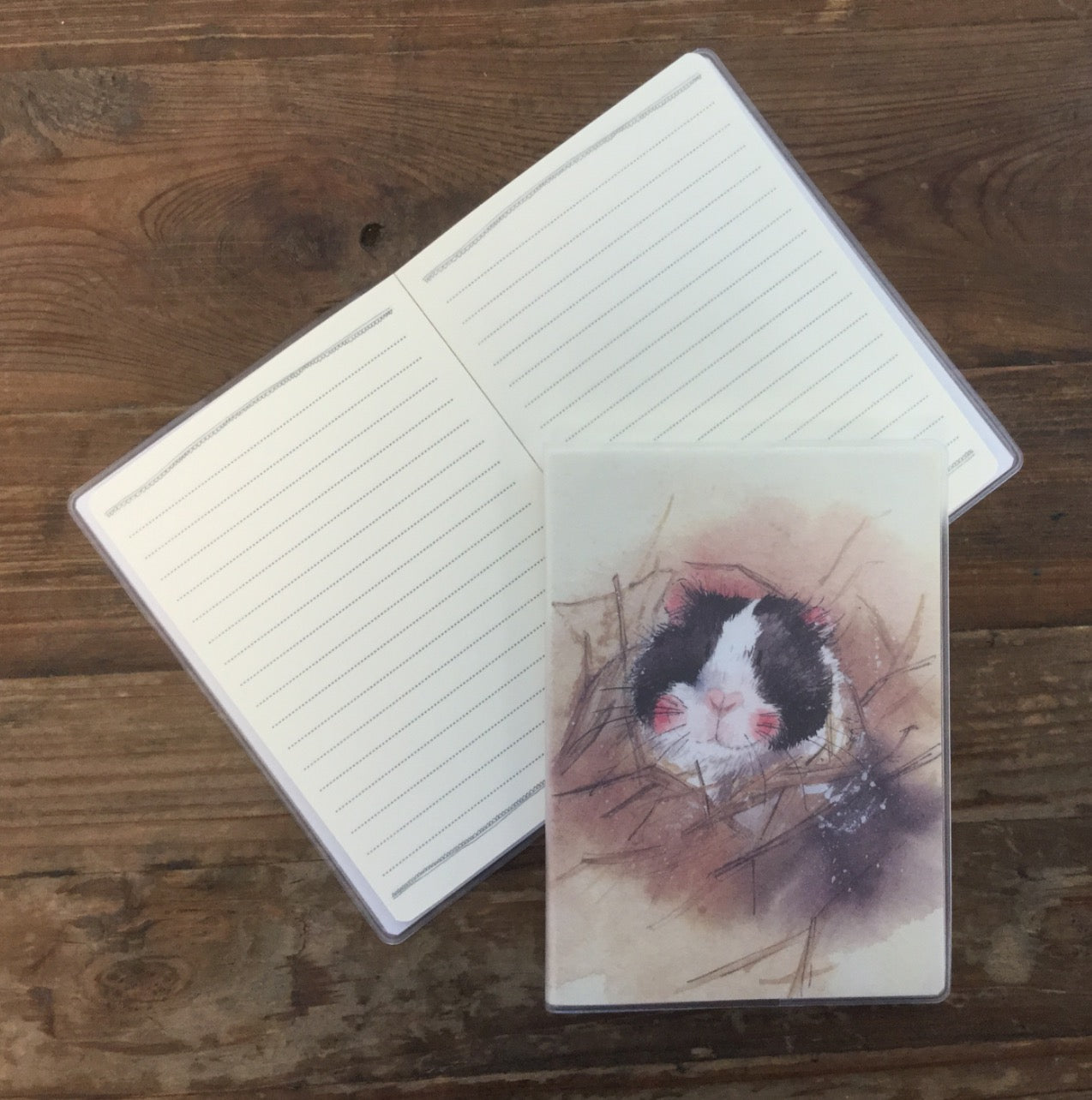 Alex Clark  Guinea Pig Notebook