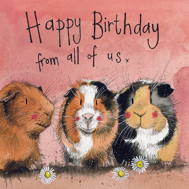 Alex Clark Guinea Pig Birthday Card