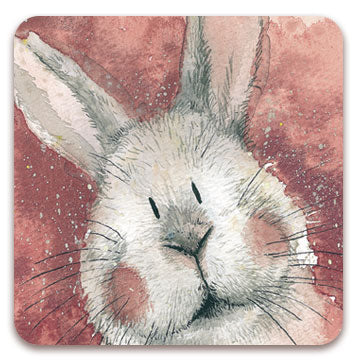 Alex Clark Fridge Magnets - Assorted Bunny Rabbit Designs