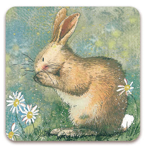 Alex Clark Washing Bunny Rabbit Fridge Magnet