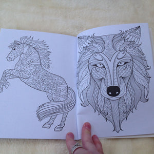 Animal & Rabbit Colouring Book