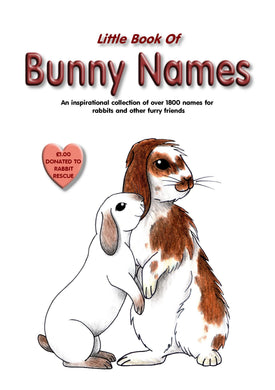 SALE - Bunny Names Book