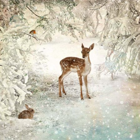 Bugart Winter Glade Christmas Card